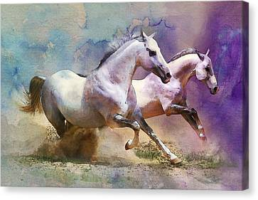 Horse Paintings 004 Canvas Print by Catf