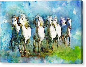 Horse Paintings 006 Canvas Print by Catf