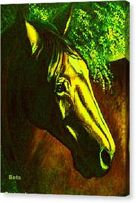 Horse Portrait Circe Sunset And Green Canvas Print by Bets Klieger