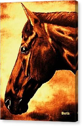 horse portrait PRINCETON brown tones Canvas Print by Bets Klieger