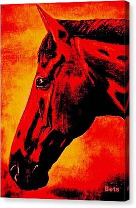 horse portrait PRINCETON sunset Canvas Print by Bets Klieger