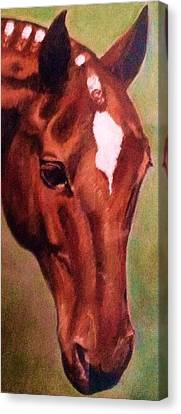 Horse Head Red Close Up Canvas Print by Bets Klieger