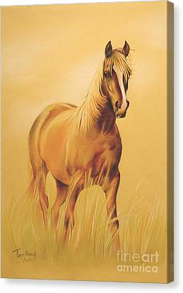 Running Horses Canvas Print featuring the drawing Horse Portrait by Tamer and Cindy Elsharouni