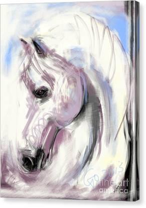Horse White Angel Canvas Print by Go Van Kampen
