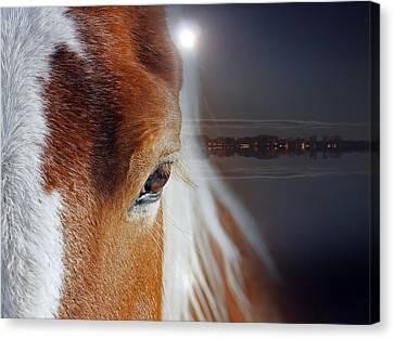 Horses  Canvas Print by Mark Ashkenazi
