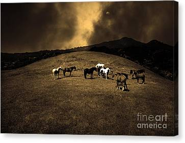 Horses Of The Moon Mill Valley California 5d22673 Sepia Canvas Print by Wingsdomain Art and Photography