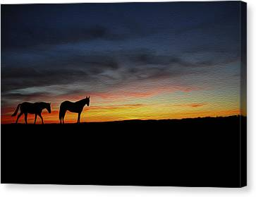 Horses Walking In The Sunset Canvas Print by Aged Pixel