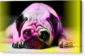 House Broken Pug Puppy Canvas Print by Marvin Blaine