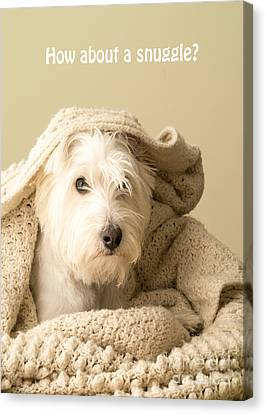 How About A Snuggle Card Canvas Print by Edward Fielding