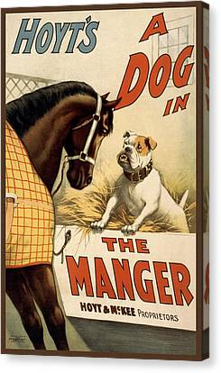 Hoyts A Dog In The Manger Canvas Print by Aged Pixel