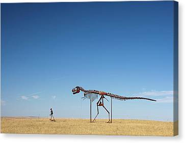 Human And T. Rex Skeletons Canvas Print by Jim West
