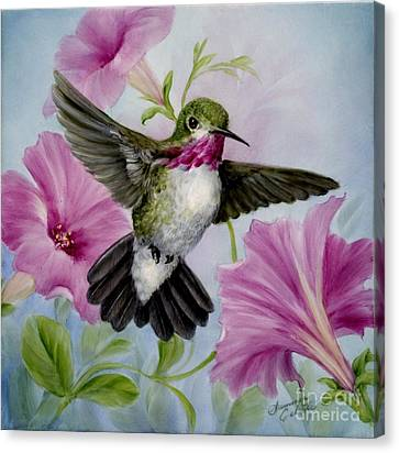 Hummer In Petunias Canvas Print by Summer Celeste