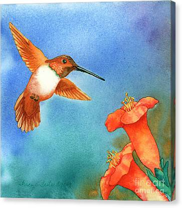Hummer Canvas Print by Tracy L Teeter