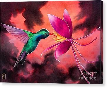 Hummingbird And Columbine Canvas Print by Robert Hooper