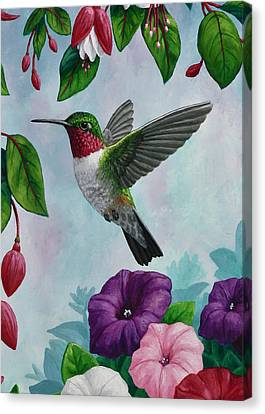 Hummingbird Greeting Card 1 Canvas Print by Crista Forest