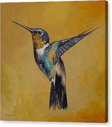 Hummingbird Canvas Print by Michael Creese