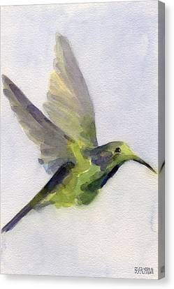 Hummingbird Watercolor Bird Painting Canvas Print by Beverly Brown Prints