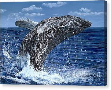 Humpback Whale Canvas Print by Tom Blodgett Jr