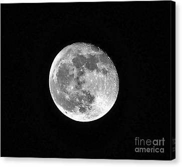 Hunters Moon Canvas Print by Al Powell Photography USA