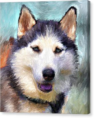 Huskies Canvas Print by Yury Malkov