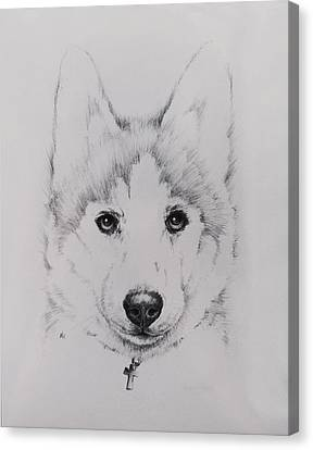 Husky Canvas Print by Rachel Christine Nowicki