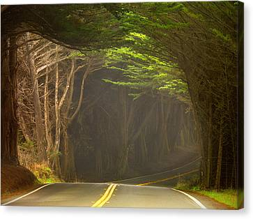 Hwy 1 Canvas Print by Leland D Howard