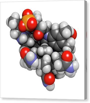 Hydroxocobalamin Vitamin B12 Molecule Canvas Print by Molekuul