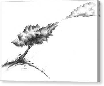 I Fell In Love With A Cloud... Canvas Print by Izabela Ciesinska