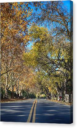 I Will Follow Canvas Print by Laurie Search
