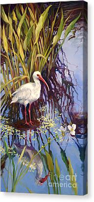 Ibis  Canvas Print by Laurie Hein