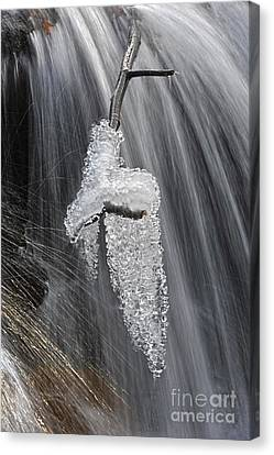 Ice And Water Canvas Print by Dan Friend