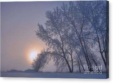 Ice Crystals In The Sky Canvas Print by Dan Jurak