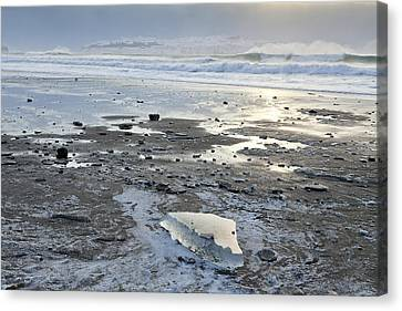 Ice On Fossil Beach Canvas Print by Tim Grams