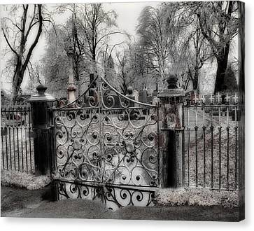 Ice On The Gate Canvas Print by Gothicolors Donna Snyder