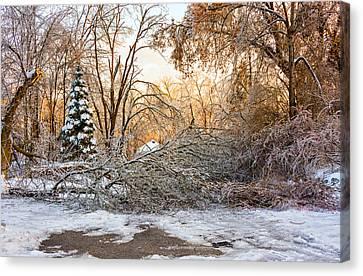 Ice Storm...day 2 Canvas Print by Steve Harrington