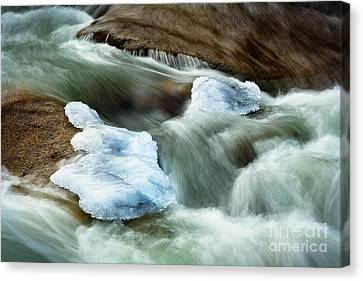 Icicle Creek Canvas Print by Inge Johnsson