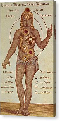 Illustration From Theosophica Practica, Showing The Seven Chakras, 19th Century Canvas Print by Indian School