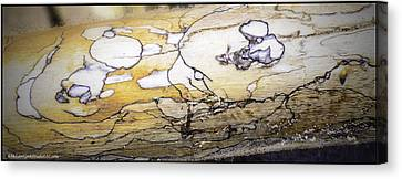 Images In Drift Wood Canvas Print by LeeAnn McLaneGoetz McLaneGoetzStudioLLCcom