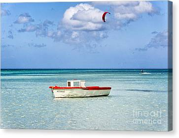 Impression Of Aruba  Canvas Print by George Oze