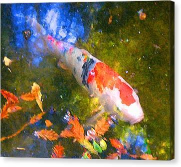 Impressionism  Koi 2 Canvas Print by Amy Vangsgard