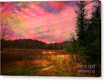 Impressionistic Morning View Of West Virginia Botanic Garden Canvas Print by Dan Friend
