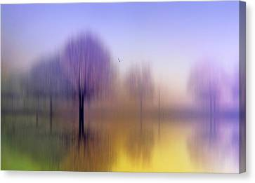 Impressions Canvas Print by Jessica Jenney