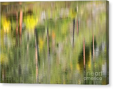 Impressions Of Autumn Canvas Print by Mike  Dawson