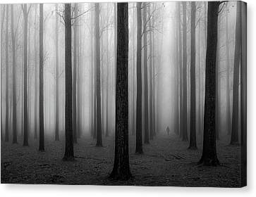 In A Fog Canvas Print by Jochen Bongaerts