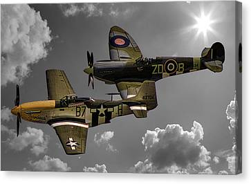 In Flight Canvas Print by Martin Newman