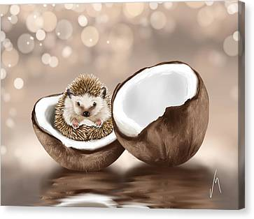 In The Coconut Canvas Print by Veronica Minozzi