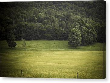 In The Country Canvas Print by Shane Holsclaw