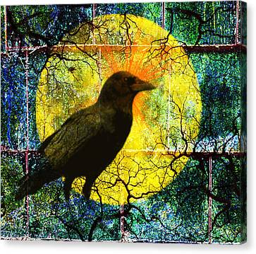 In The Night Canvas Print by Nancy Merkle