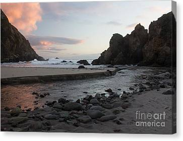 In The Pink Canvas Print by Suzanne Luft