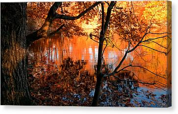 In The Pond Canvas Print by Lourry Legarde